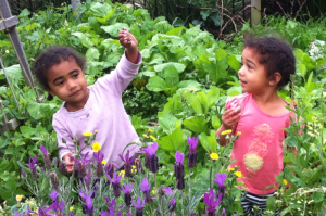 Neighborhood children find snails in Dover's edible park